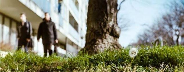 Quo vadis, CSR? Chancen und Perspektiven nachhaltigen Wirtschaftens von KMU in Wien
