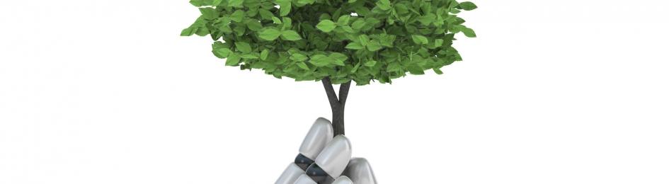 Reduktion, Anpassung oder Engineering: Optionen im Umgang mit dem Klimawandel
